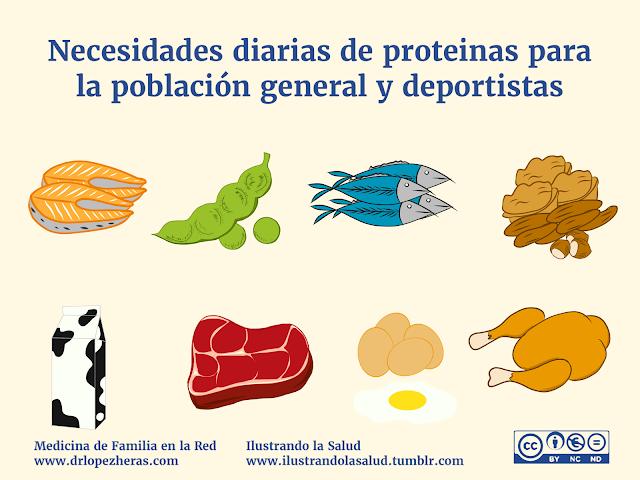 Proteína por toma y producción muscular 1
