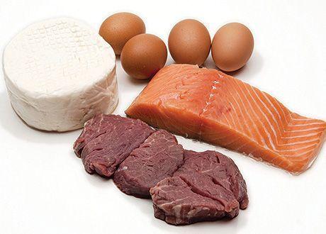 Una alta ingesta de proteína no perjudica los huesos de los culturistas 24