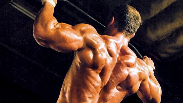 Tipo de grasa dietaria y ganancia muscular 2