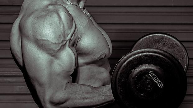 ¿Existe un límite de proteína aprovechable en una sola comida? (Alan Aragon) 5
