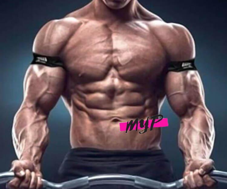 ▷ Entrenamiento para la hipertrofia muscular en 【2020】 3