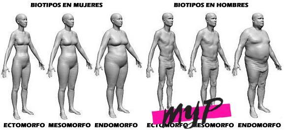 Biotipos 1