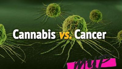 El cannabis es más cancerígeno que el tabaco 1