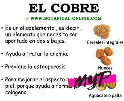 Importancia del cobre en la salud de la piel 3