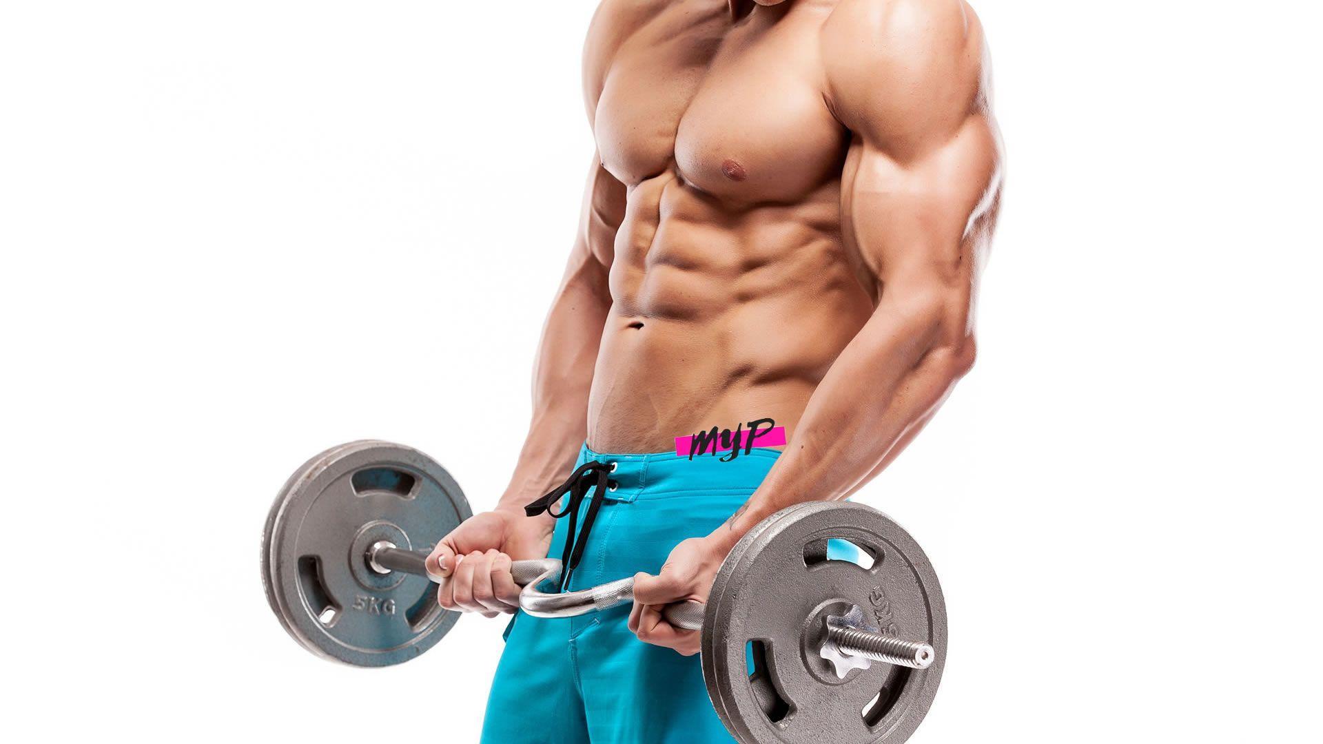 ▷ En busca del crecimiento muscular en 【2020】 2
