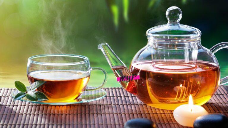 ▷ Té Antioxidante - Mito y Realidad en 【2020】 16