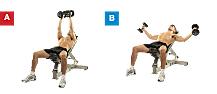 Define tus músculos en 12 semanas 2