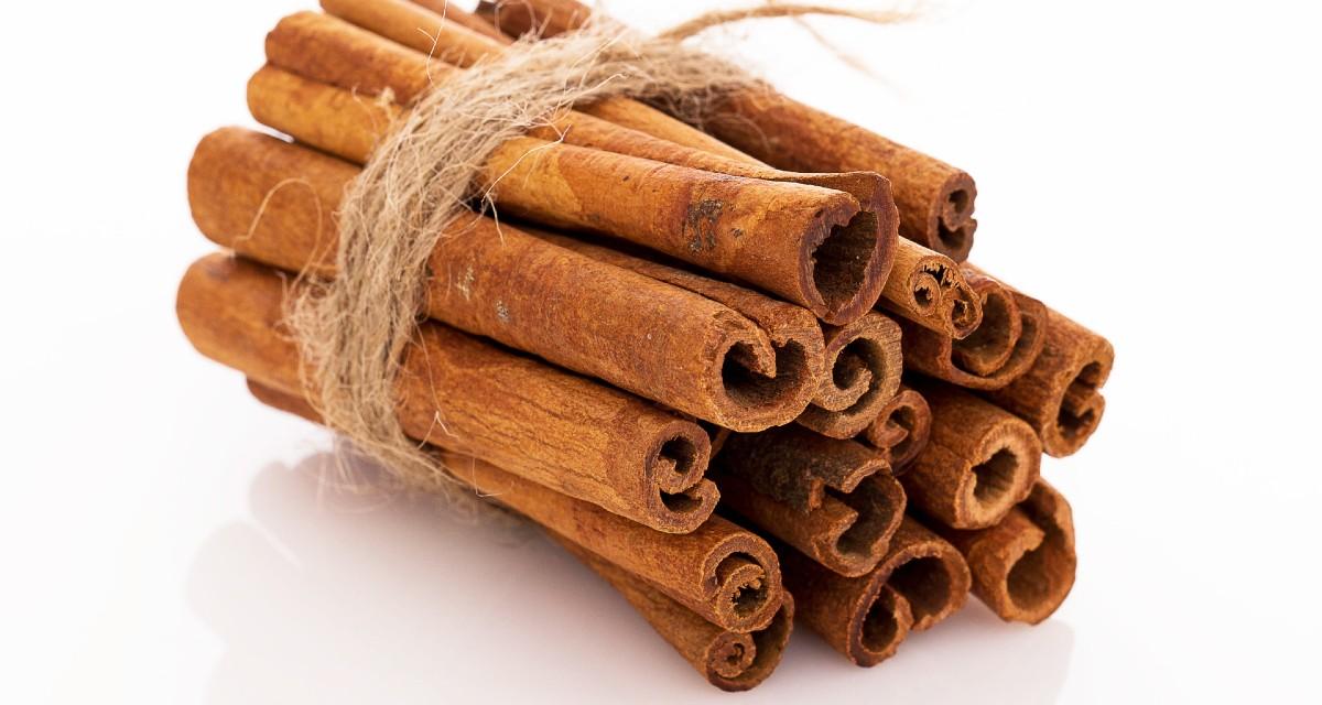 Beneficios del sasafrás de canela y para que sirve 1