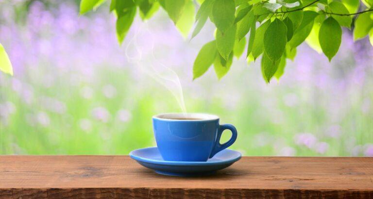 Beneficios del té de malva y contraindicaciones. 23