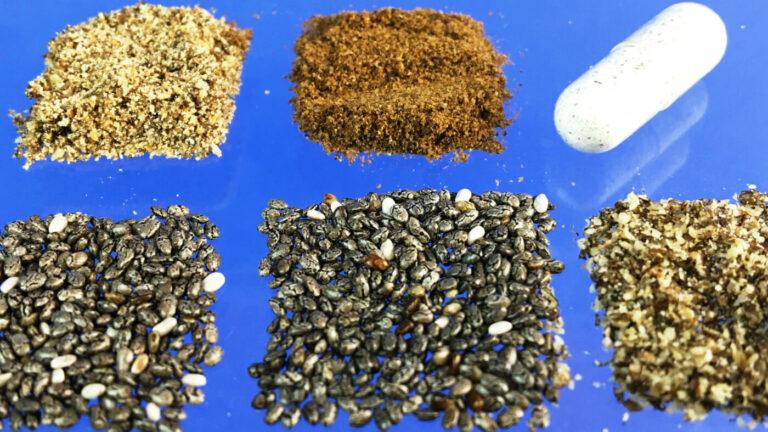 Revisión e información de semillas de chía 5