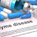 Todo sobre Lyme Chronic y posibles tratamientos 2