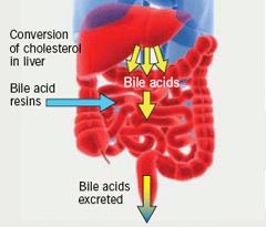 Usos y efectos secundarios de la colestiramina (CSM) 1