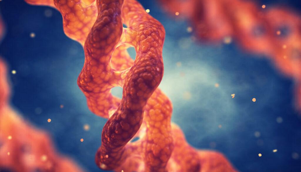 Heat-Shock-Proteins-HSP70-Factors-That-Increase-Them.jpg