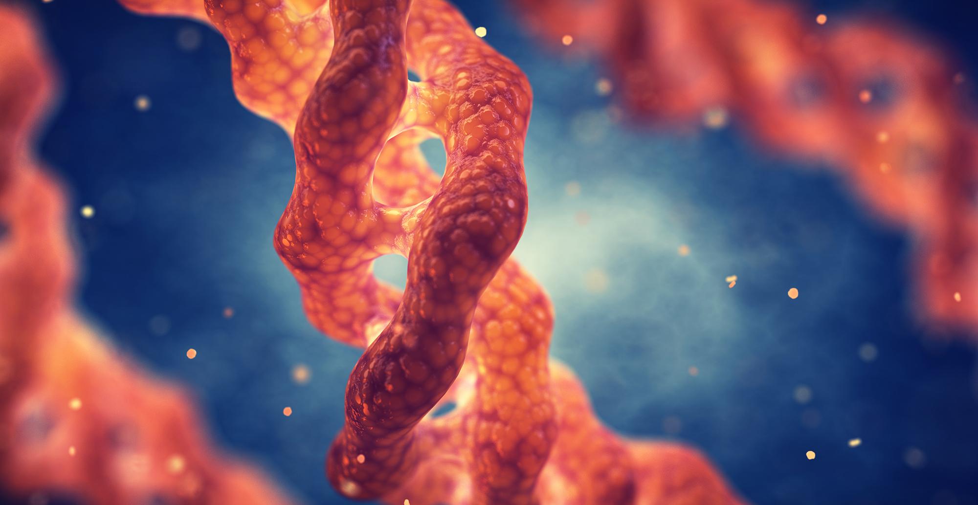 Proteínas de choque térmico y factores crecientes HSP70 + 1