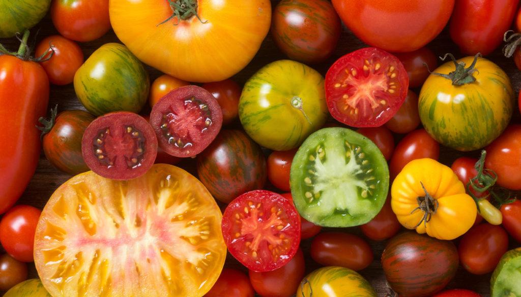 Tomatoes-1024x682.jpeg