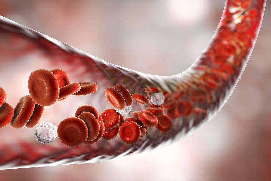 Análisis de sangre de NRBC (RBC nucleados): niveles normales y anormales 1