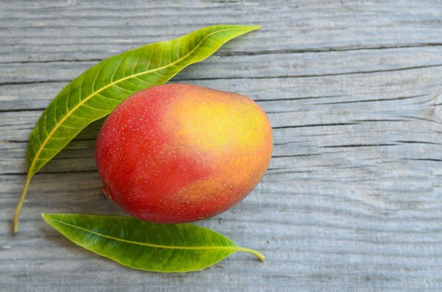 Beneficios y efectos secundarios del mango africano (Irvingia gabonensis) 1
