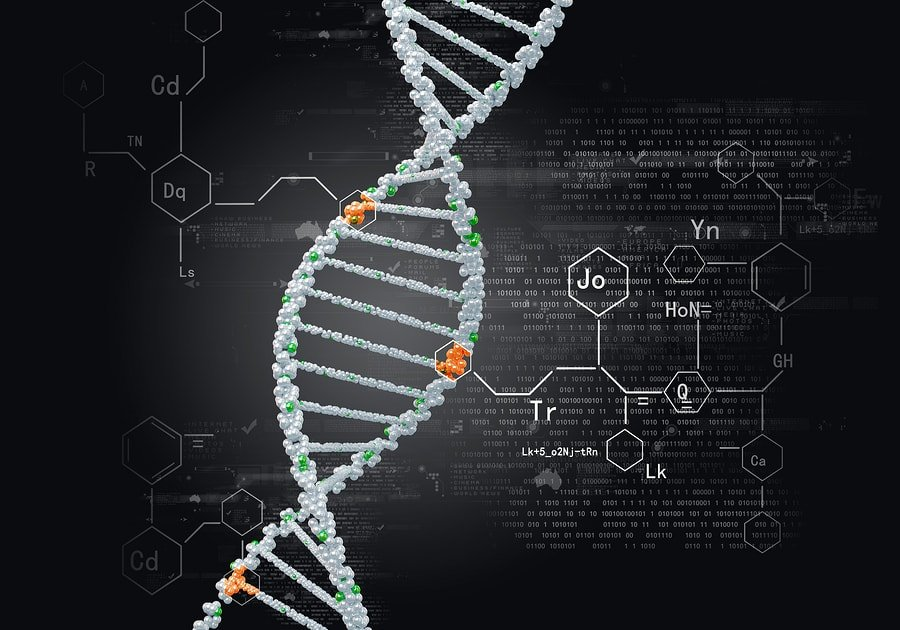 Función de la enzima CYP2B6, genética y aumento o disminución 1