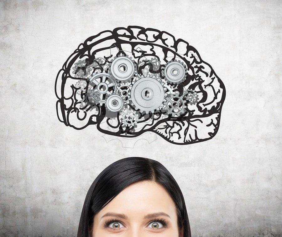 ¿Qué efectos tiene el estradiol en el desarrollo cerebral y la cognición? 1