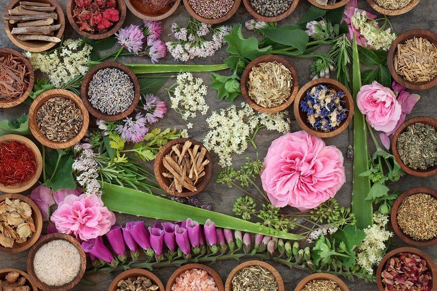 3 beneficios para la salud de Muira Puama + efectos secundarios 1