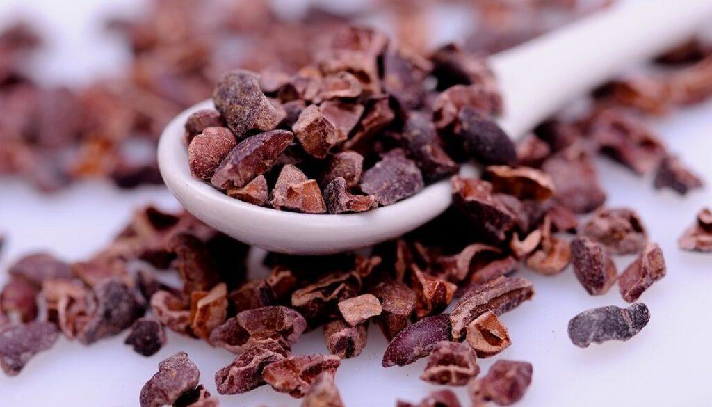 bigstock-Organic-Raw-Cacao-Nibs-64665559-min-1.jpg