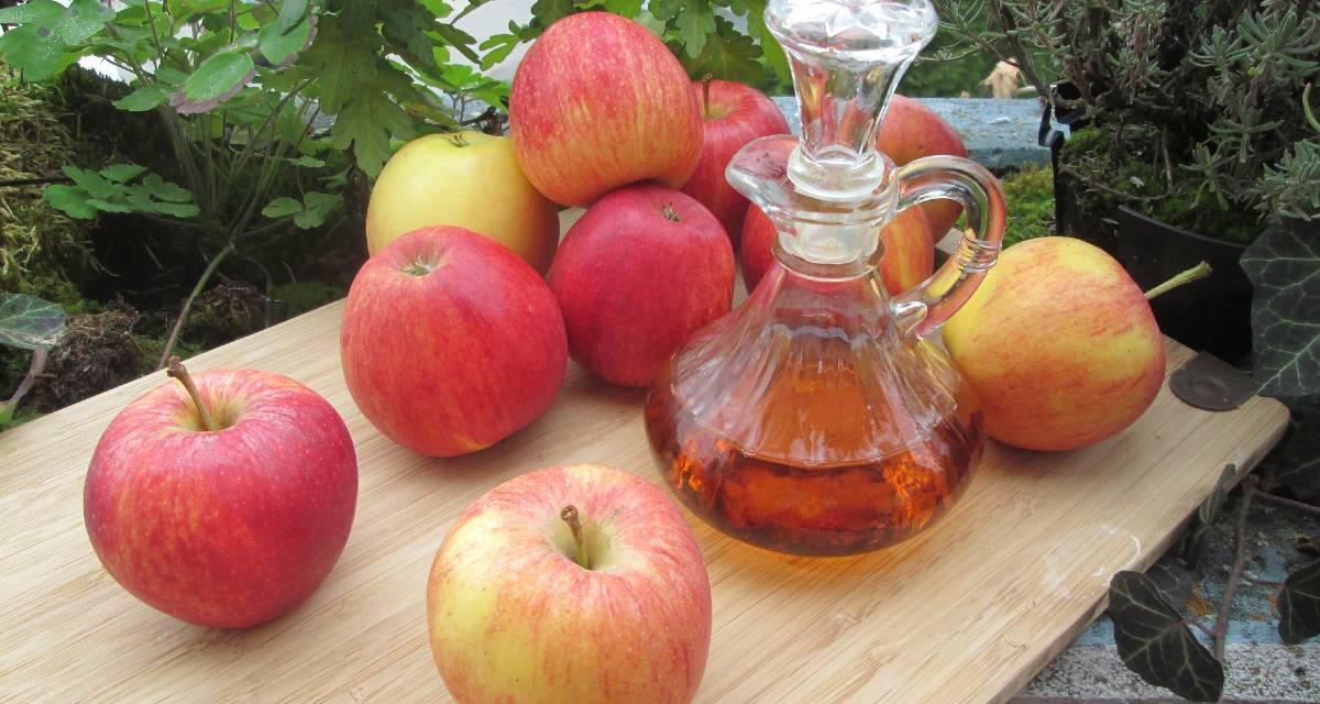 Agua con vinagre de sidra de manzana - Beneficios y cuidados 13